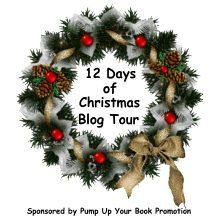 12-days-of-christmas-blog-tour